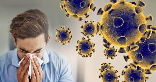 Symptoms of Corona Virus