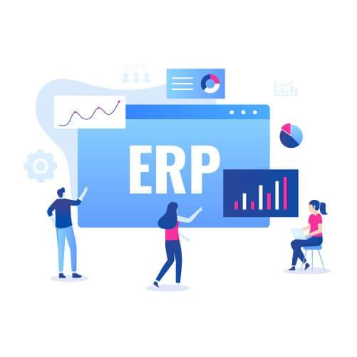 ERP application development services